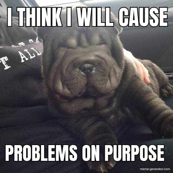 I think I will cause problems on purpose
